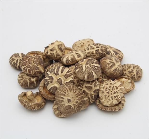 표고버섯 부작용