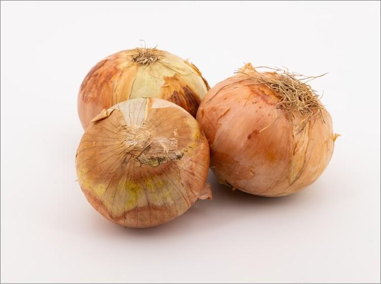 퀘르세틴이 함유된 식품