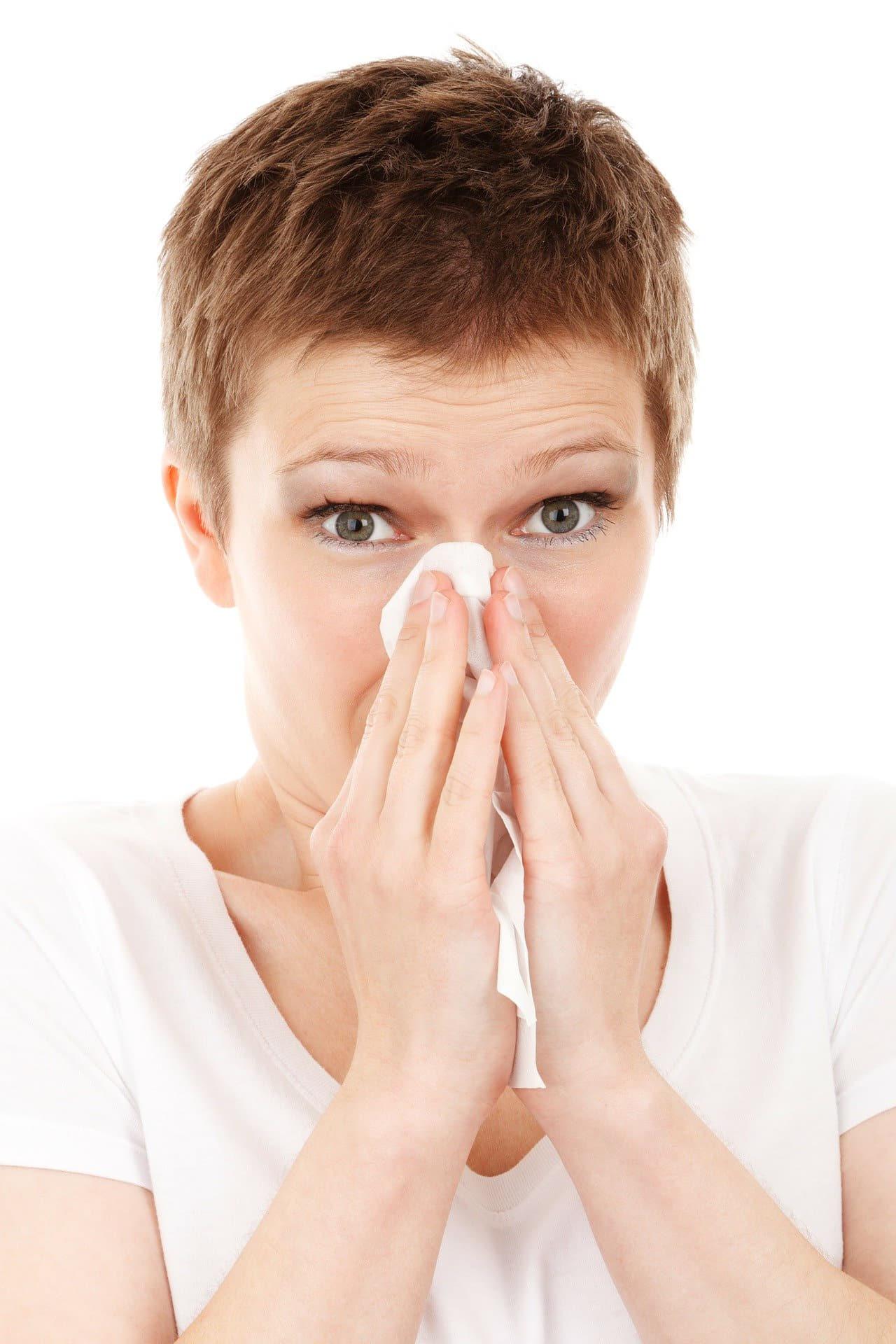 독감 예방 접종