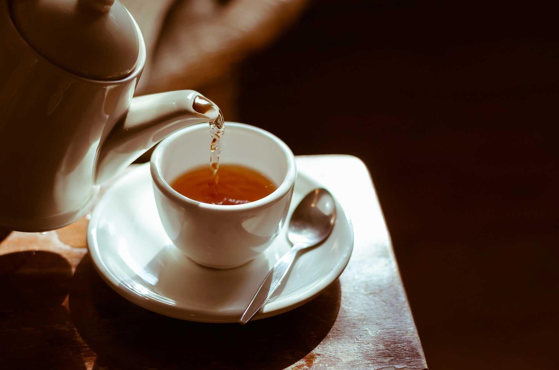 커피 카페인