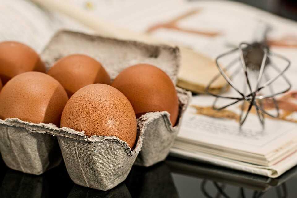 계란 열량