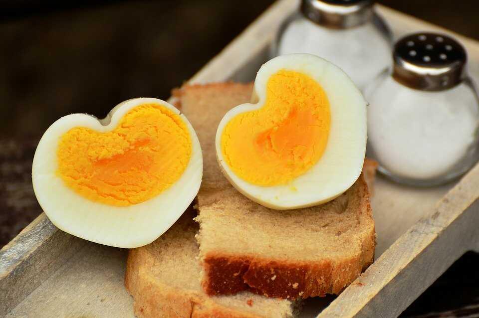 계란 칼로리