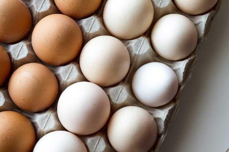 계란 효능